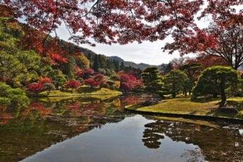 Unikke japanske ord