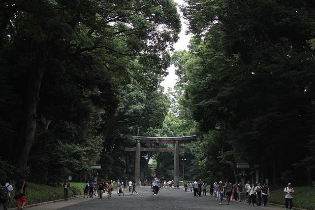 Yoyogi parken i Tokyo